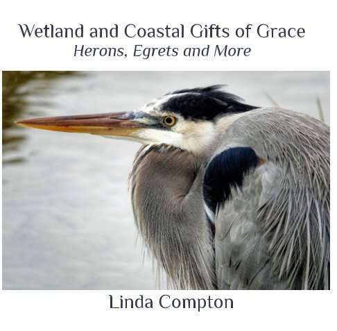 View Wetland and Coastal Gifts of Grace by Linda Compton