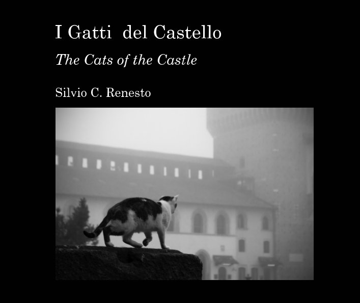View I Gatti del Castello by Silvio Claudio Renesto