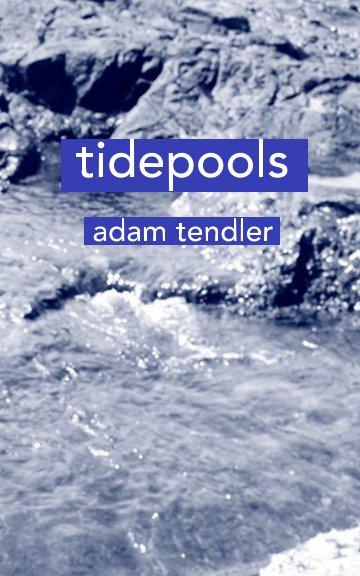 View tidepools by Adam Tendler