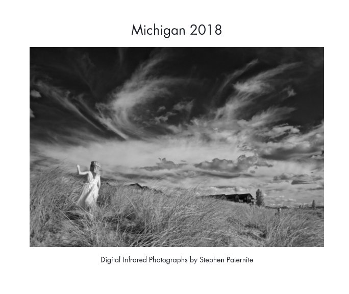 View Michigan 2018 by Stephen Paternite
