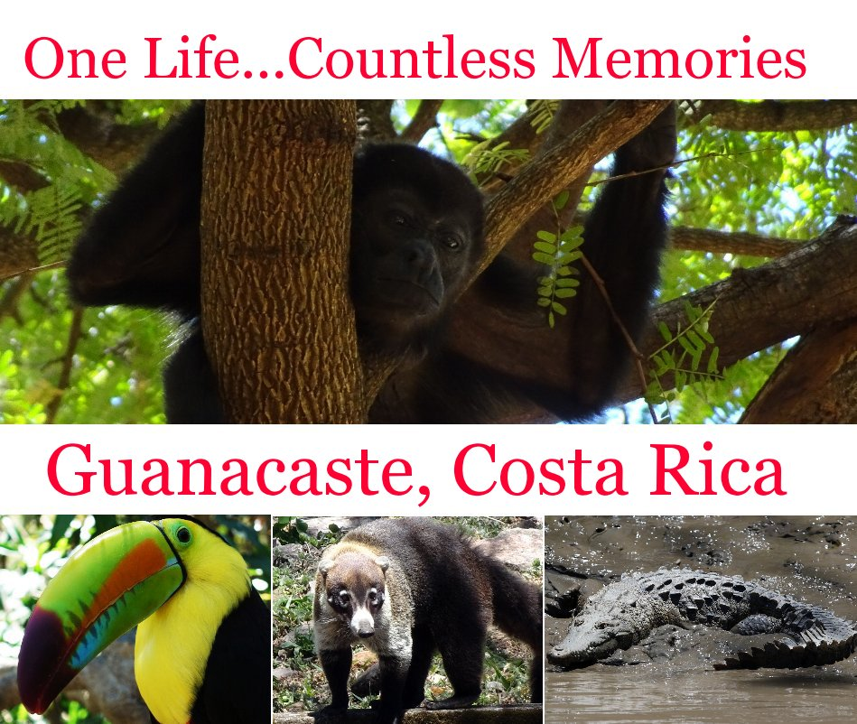 View One Life Countless Memories: Guanacaste, Costa Rica by Chris Shaffer