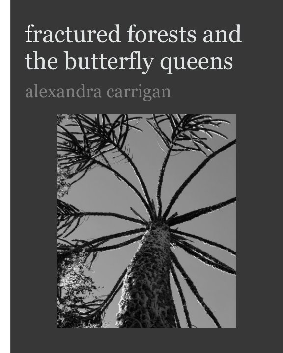 View fractured forests and the butterfly queens by Alexandra Carrigan
