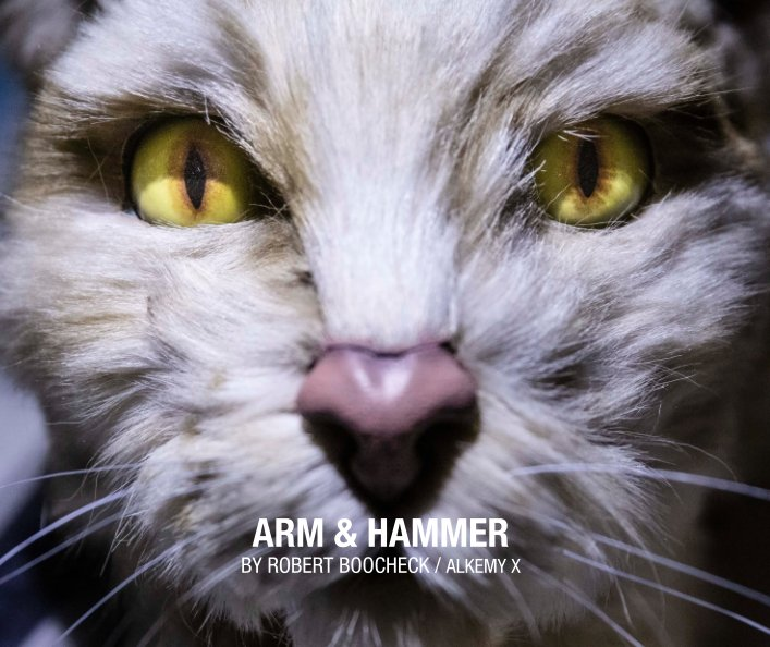 View Arm and Hammer by GB