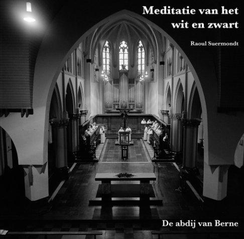 View Meditatie van het wit en zwart by Raoul Suermondt