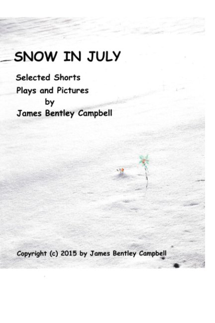 View Snow in July by James Campbell