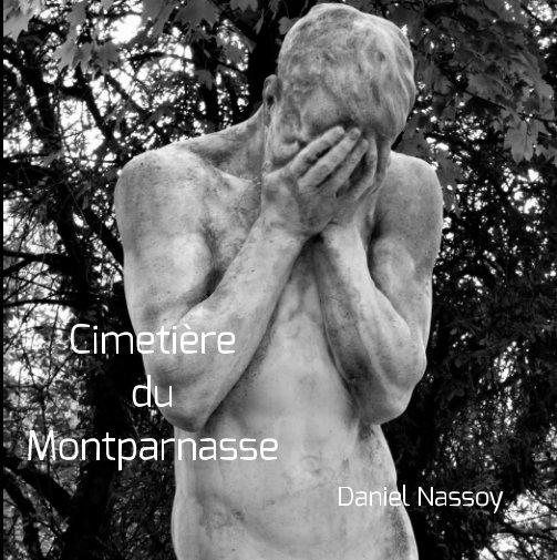 """View """"Cimetière du Montparnasse"""" 18x18 by Daniel Nassoy"""
