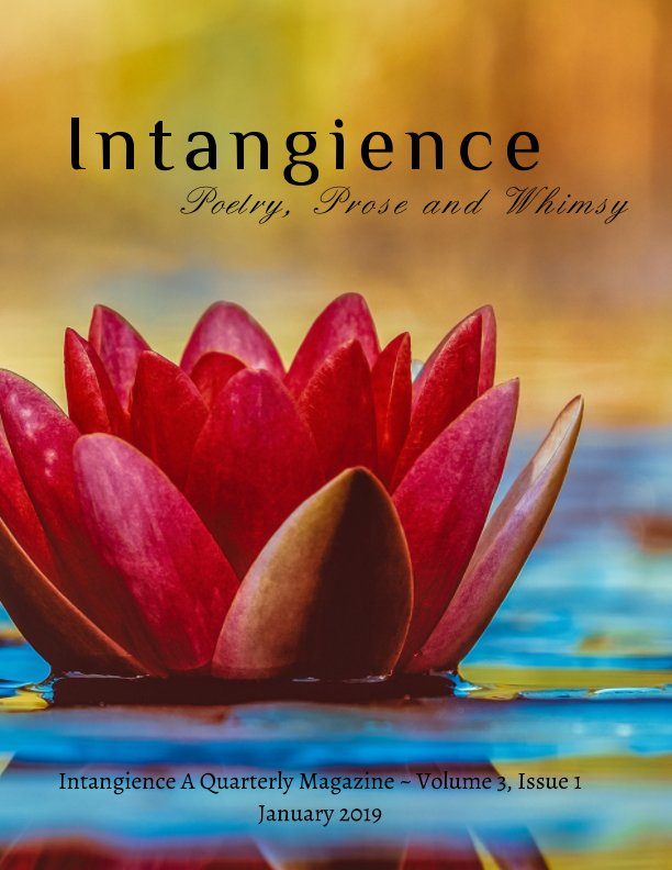View Intangience: A Quarterly Magazine Volume 3, Issue 1 by M. Kari Barr