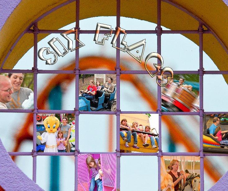 Ver Six Flags 2009 por NWK