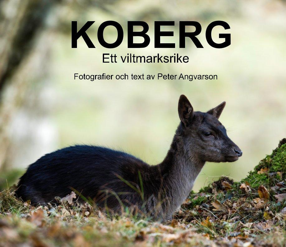 View Koberg by Peter Angvarson