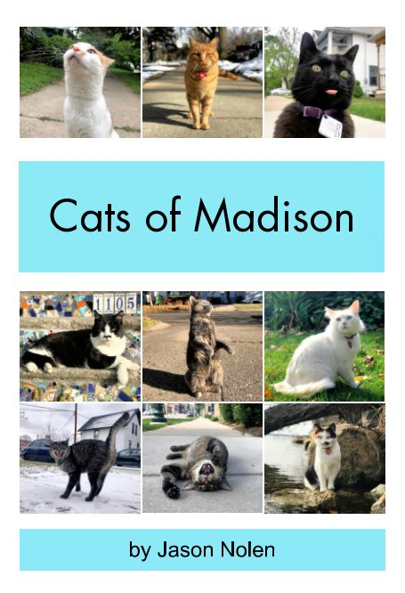 View Cats of Madison by Jason Nolen
