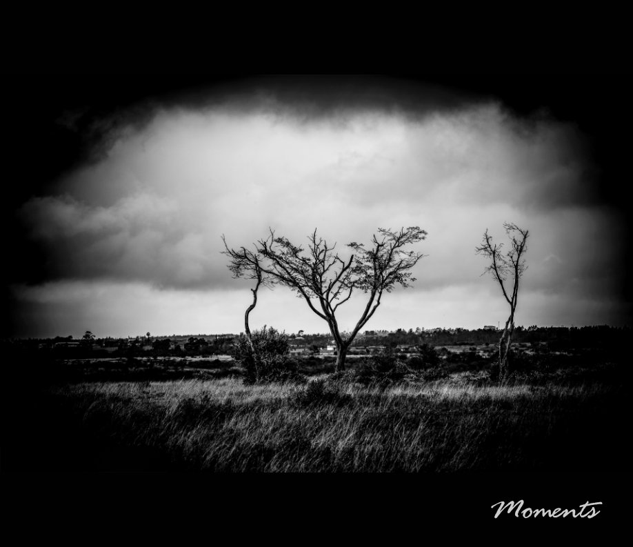 View Moments 1 by Ibrahim Youssry