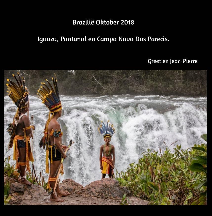 Ver Brazilie oktober 2018 por Greet Urkens