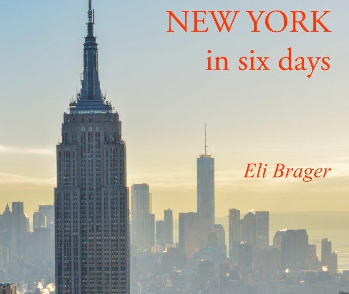 View New York 2018 by Eli Irene Brager