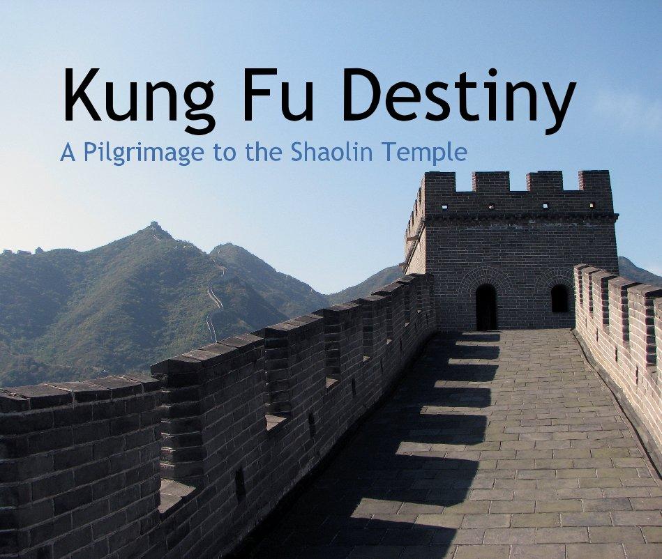 View Kung Fu Destiny by Matt Talbert