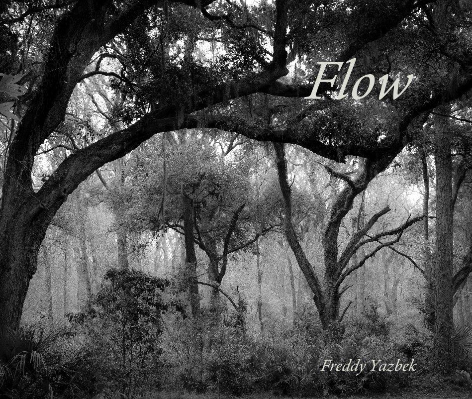 View Flow by Freddy Yazbek