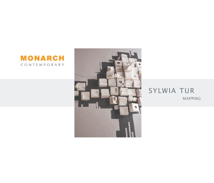 View Sylwia Tur : Mapping by Monarch Contemporary