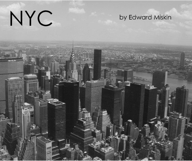 View NYC by Edward Miskin