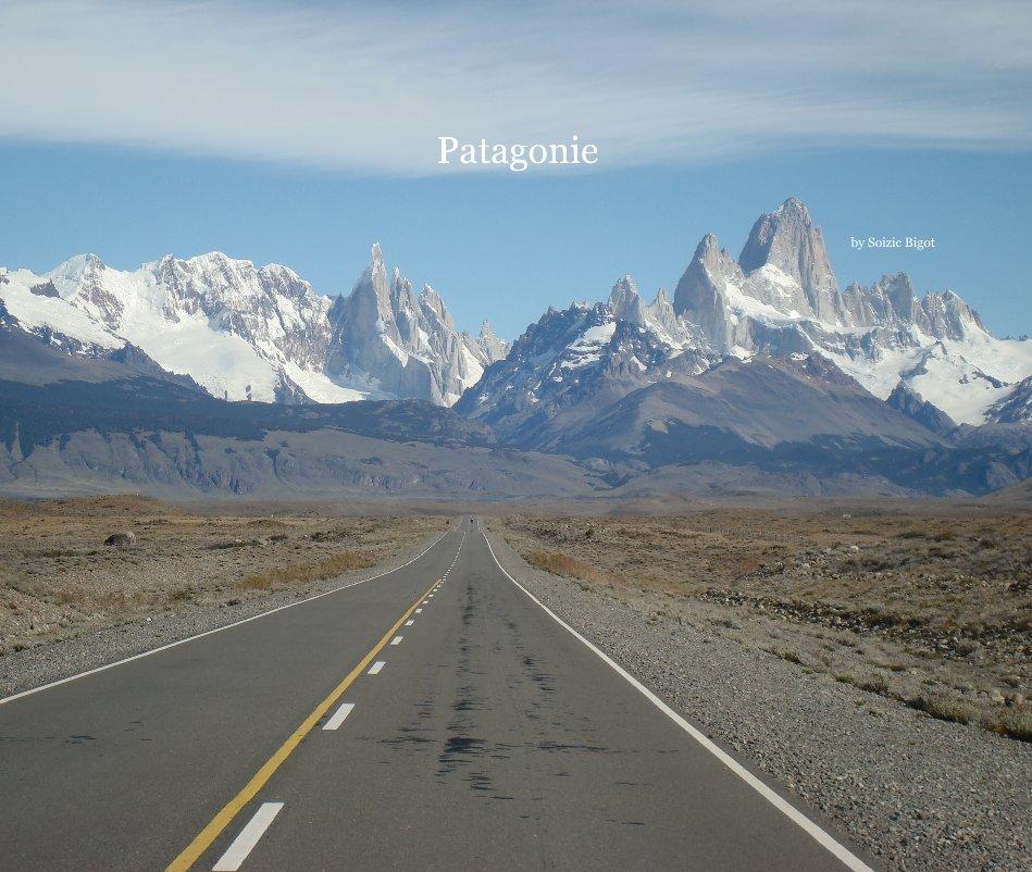 View Patagonie by Soizic Bigot