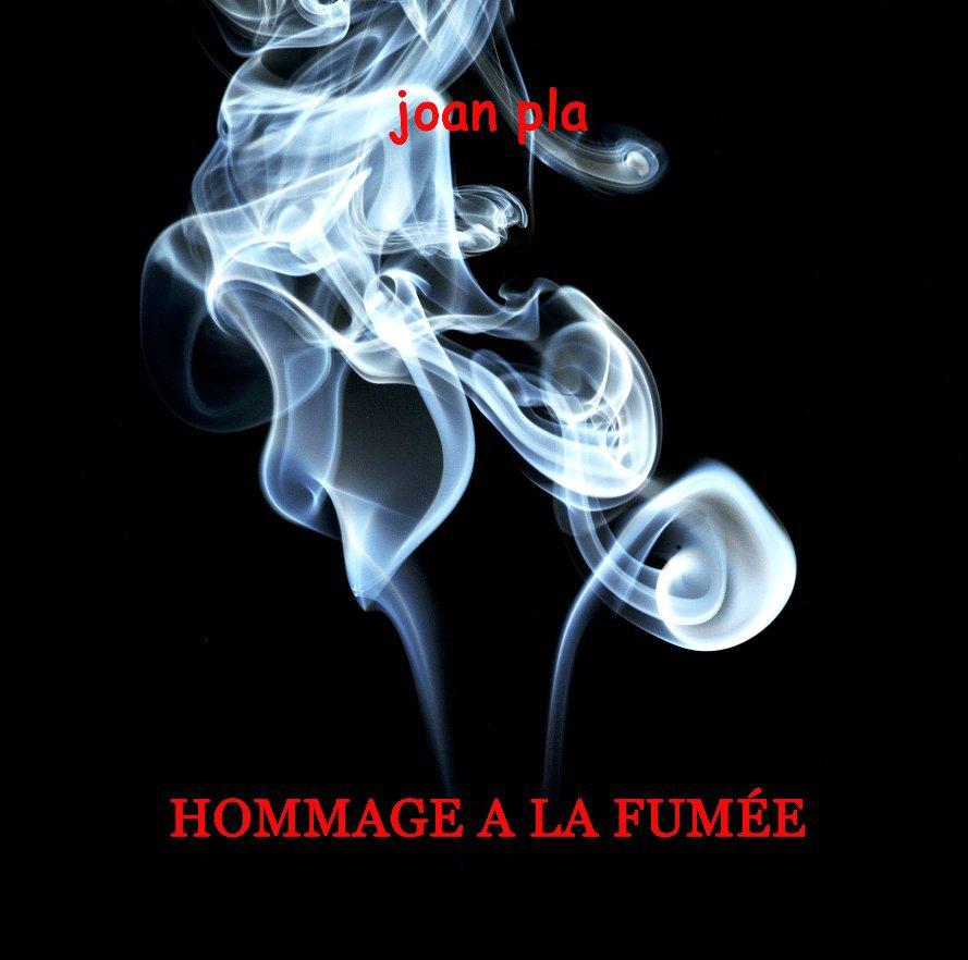 Ver HOMMAGE A LA FUMÉE por JOAN PLA