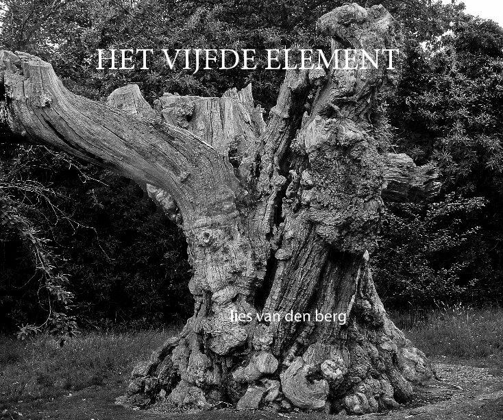 View HET VIJFDE ELEMENT by Lies van den Berg