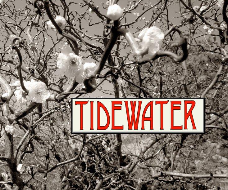 View Tidewater by Richard Nilsen