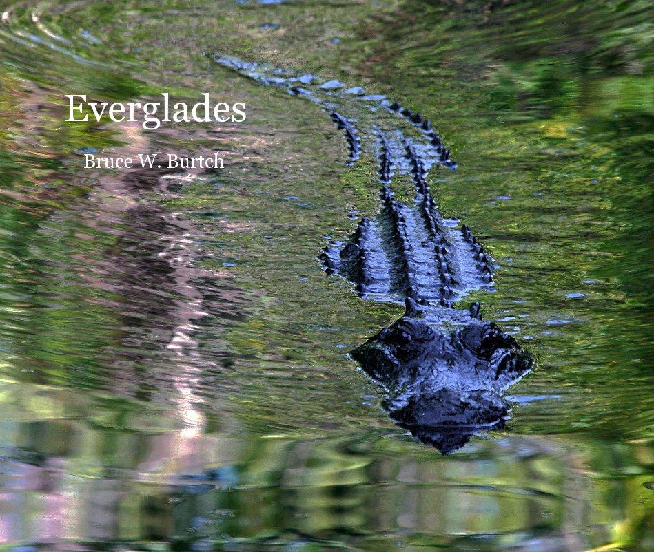 View Everglades by Bruce W. Burtch