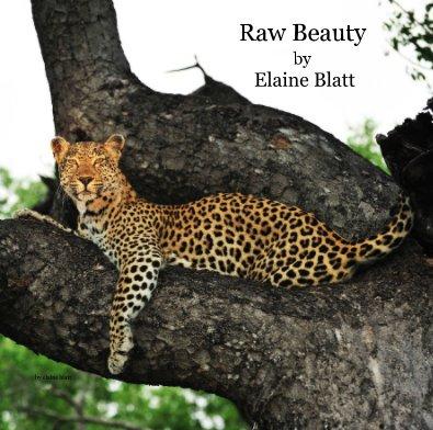 Raw Beauty by Elaine Blatt - Arts & Photography Books photo book
