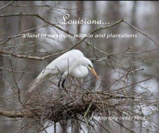 Louisiana... - Travel photo book
