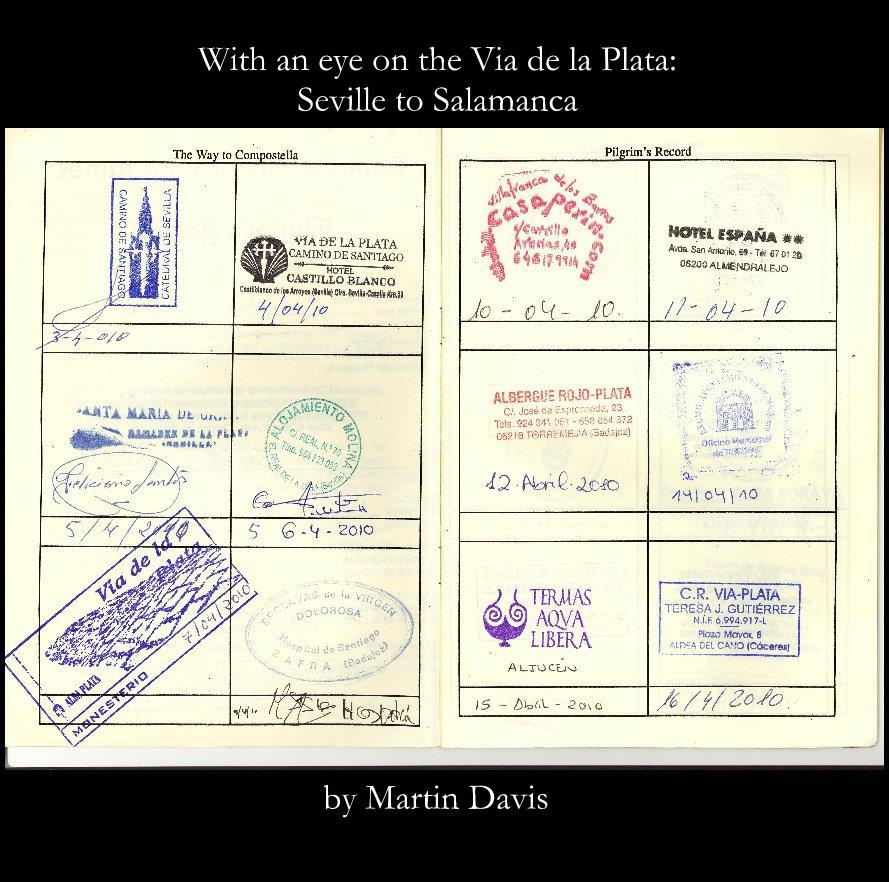 View With an eye on the Via de la Plata by Martin Davis