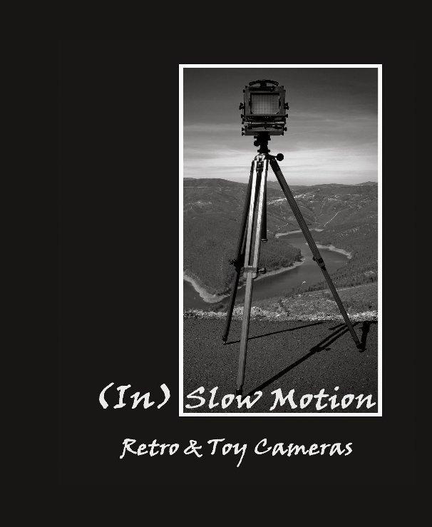 Ver (In) Slow Motion por ElsaMotaGomes&ArmandoCardoso