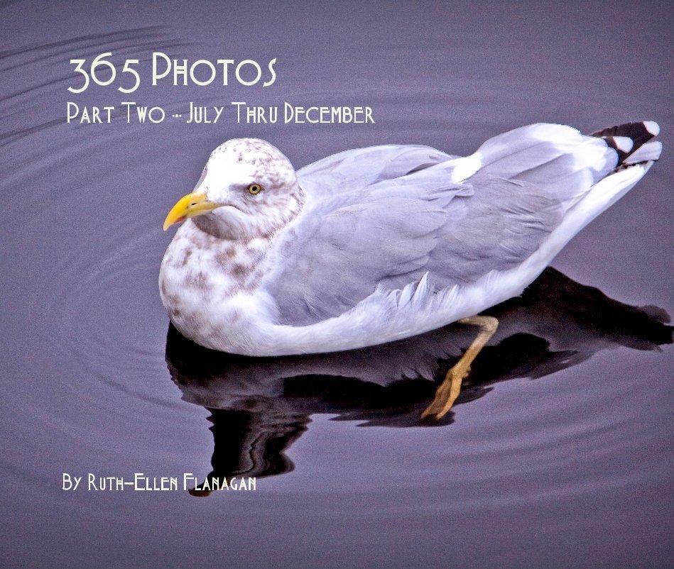 View 365 Photos Part Two ∙•∙ July Thru December by Ruth–Ellen Flanagan
