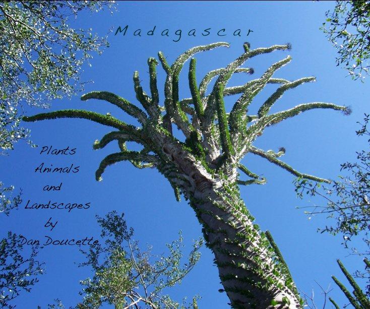 View Madagascar by Dan Doucette