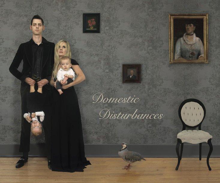 View Domestic Disturbances by David Klein Gallery
