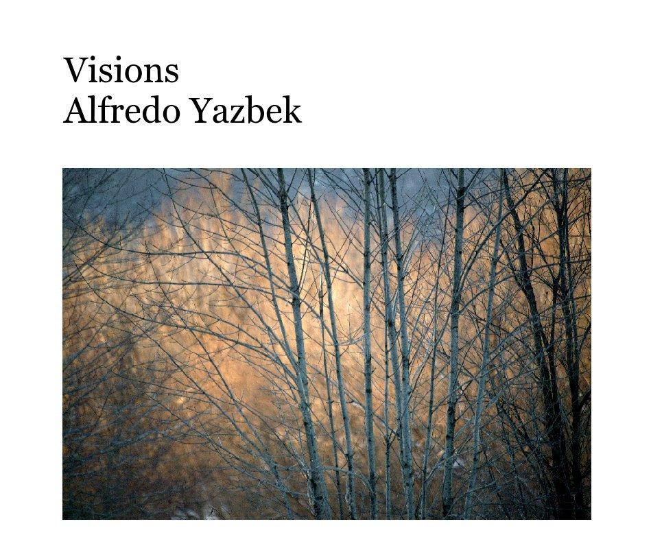 View Visions  Alfredo Yazbek by fretan