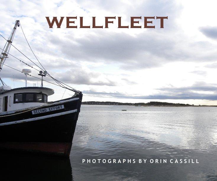 View WELLFLEET by ORIN CASSILL