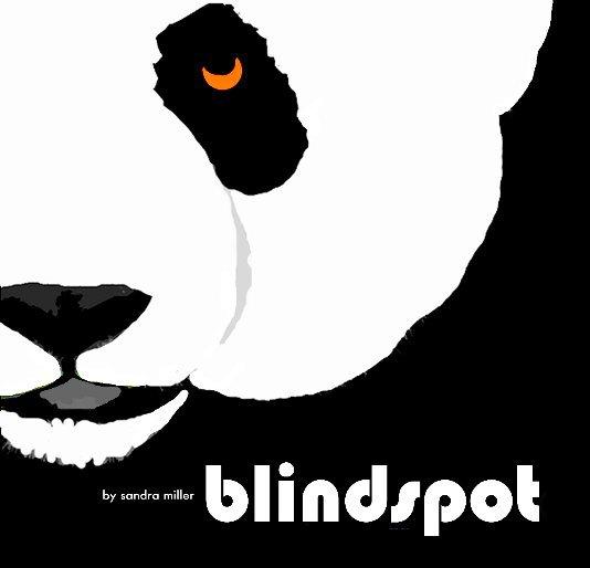 View BLINDSPOT by Sandra Miller