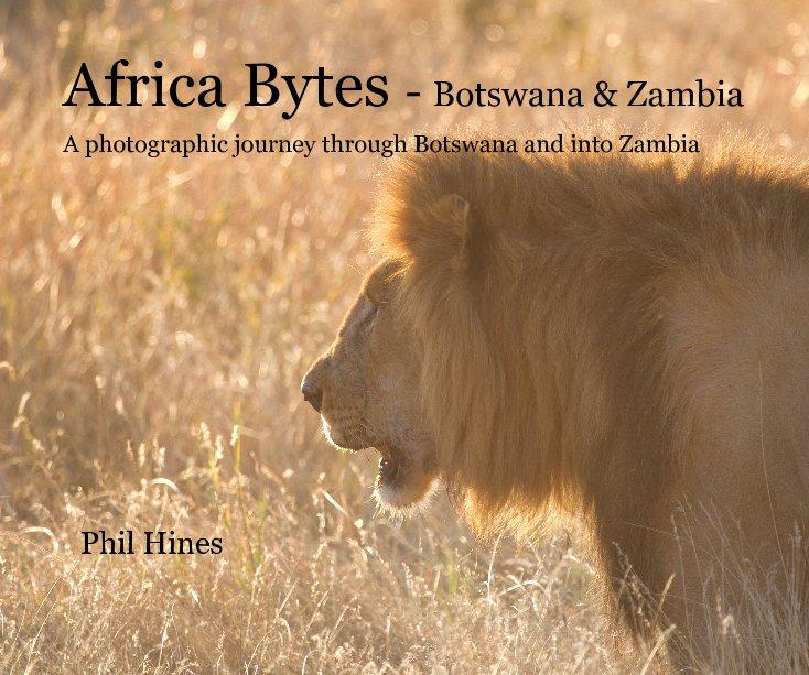 View Africa Bytes - Botswana & Zambia by Phil Hines