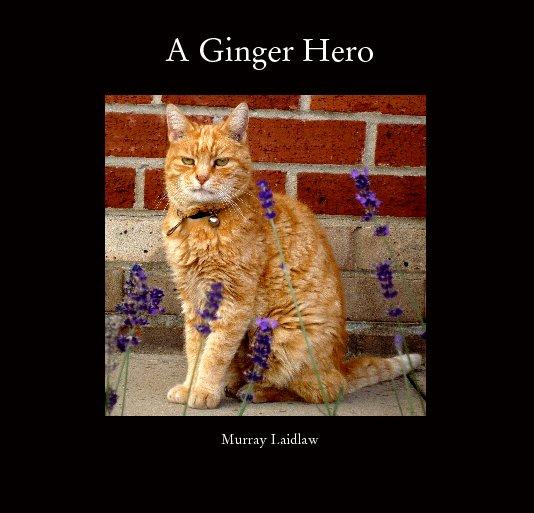 Ver A Ginger Hero por Murray Laidlaw