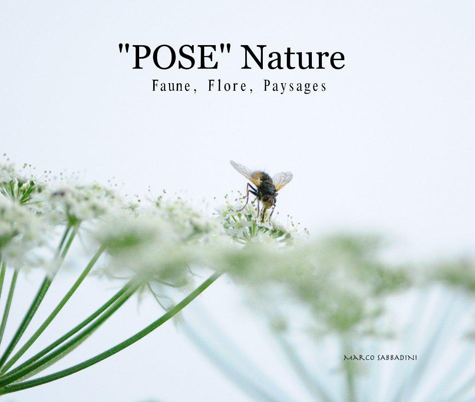 "View ""POSE"" Nature Faune, Flore, Paysages Marco SABBADINI by SABBADINI Marco"