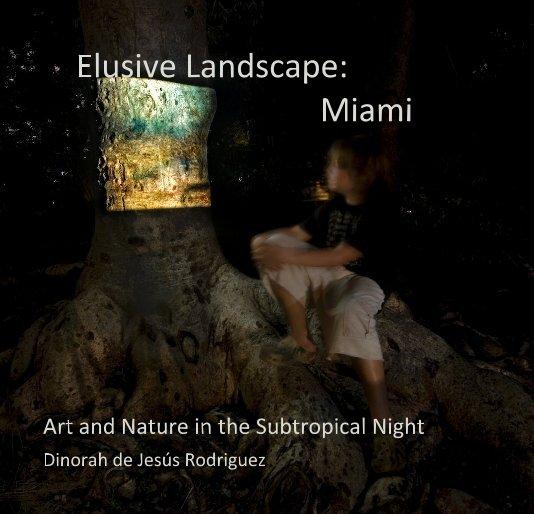 View Elusive Landscape: Miami by Dinorah de Jesús Rodriguez