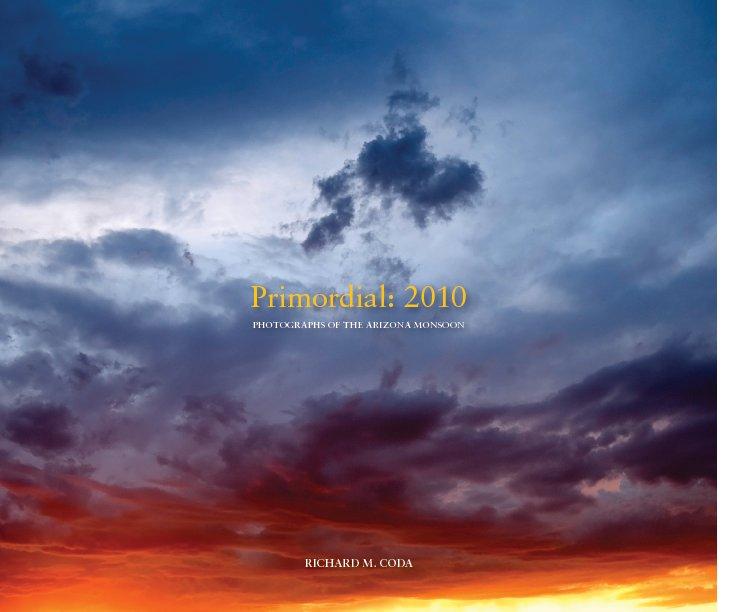 View Primordial: 2010 by Richard M Coda