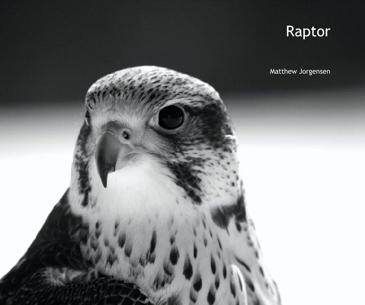 View Raptor by Matthew Jorgensen