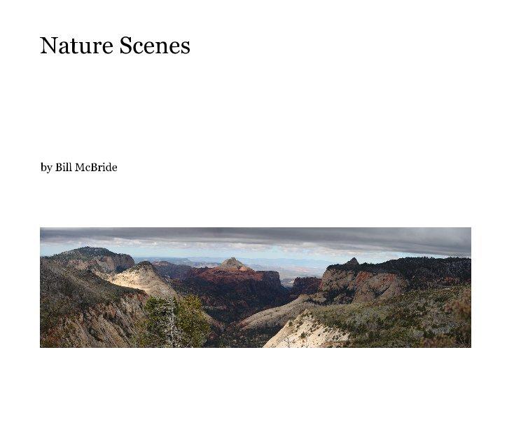 View Nature Scenes by Bill McBride