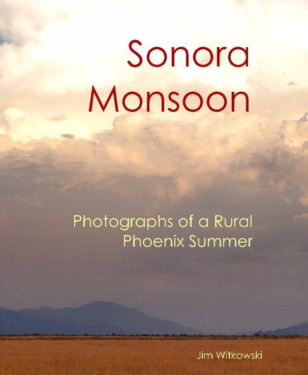 View Sonora Monsoon by Jim Witkowski