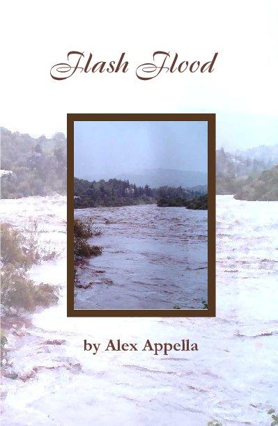 Ver Flash Flood por Alex Appella