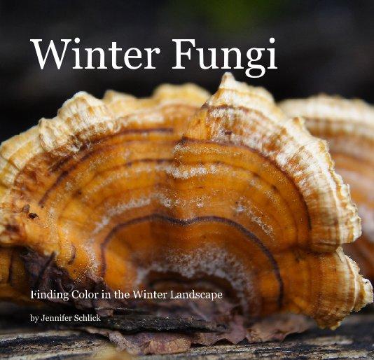 View Winter Fungi by Jennifer Schlick