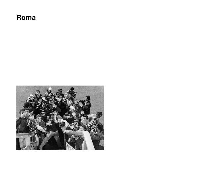 View Roma by Alicia Bozzone, Apollonia Colacicco, Megan Cook, Nicole DeMeo, Kathleen Detjen, Eve Krupitsky, Patricia Peguero-Vidal, Melissa Smyth, William Tanksley, Joni Vasquez; Curated by Stephan Apicella-Hitchcock & Joseph Lawton