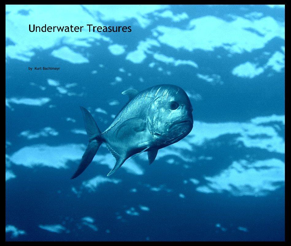 View Underwater Treasures 2 by Kurt Bachlmayr
