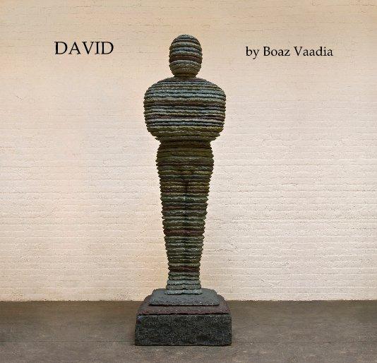 View David by Boaz Vaadia