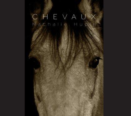 Chevaux - Photographie artistique livre photo